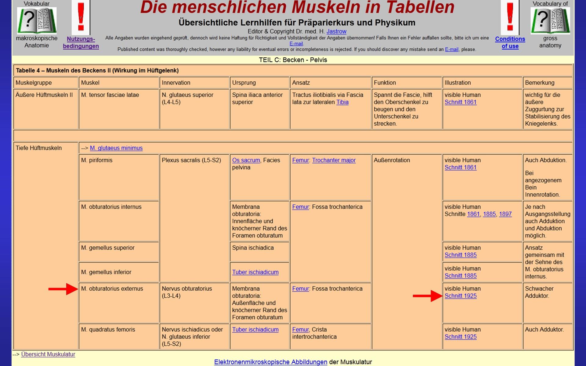 Atemberaubend Menschliche Anatomie Einer Tabelle Der High School ...